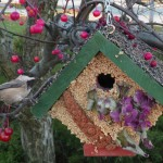 Winter Bird Seed Wreath